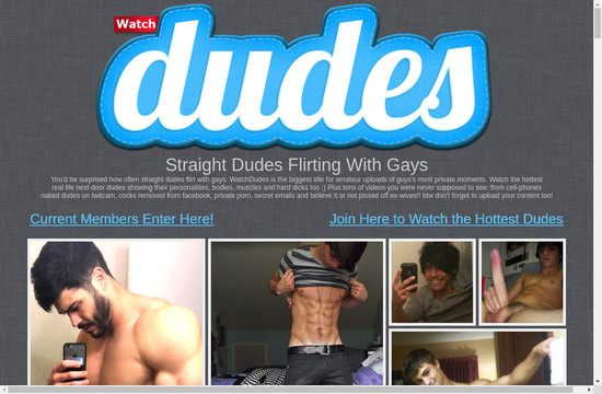 Watch Dudes