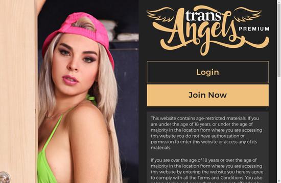 Trans Angels Premium