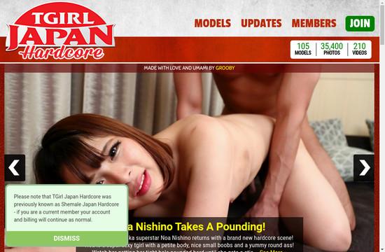 T Girl Japan Hardcore